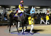 川崎8R芙蓉賞(戸塚記念TR) 川崎の馬、夏バテ?