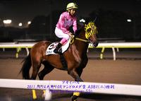 大井9Rノースウインド賞 サウンドイモン、ラストラン