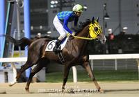 第11回岩手県知事杯OROカップ+第32回ナナカマド賞