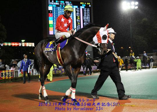 第33回帝王賞(JpnI) 3枠4番ボンネビルレコード