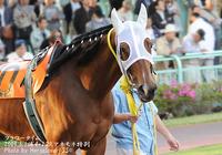 3連勝(・ω・)/ - 浦和10R深秋特別