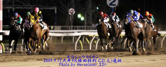 船橋10R花巡り特別 -  ホットロッドが復帰!