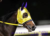第5回東京シンデレラマイル(SIII)