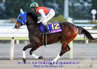 第35回京浜盃(SII)