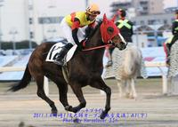 大井11R'11雲取賞+12R春霞賞