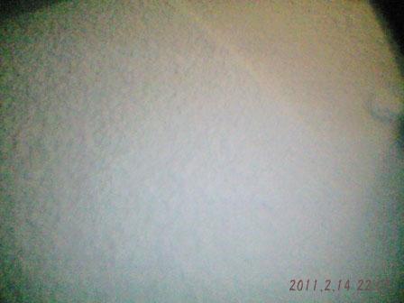 いちおう雪が積もった! ばんえい競馬調教動画
