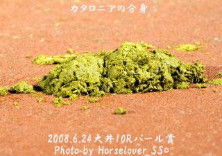 バフ~ン - 帝王賞