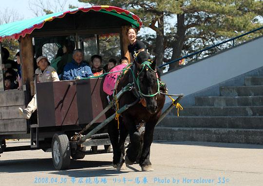 ばん馬と道産子と5万円の野球帽