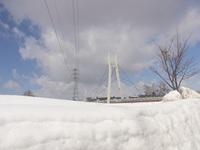 雪がどんどん融けていく、札幌は気温が4度だった