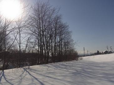 今日から大寒です一年中で一番寒い時期