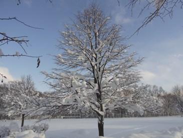 劇団四季が北海道に上陸した