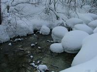 冬の渓流を撮る!