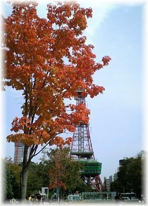 テレビ塔前の紅葉