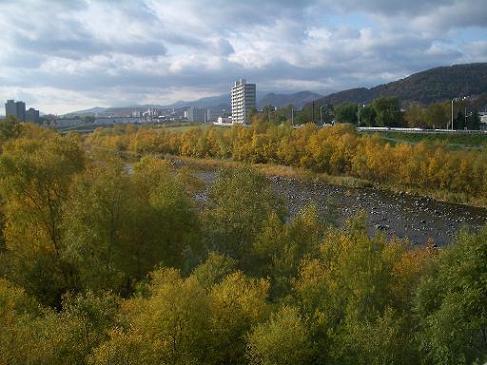 豊平川の紅葉