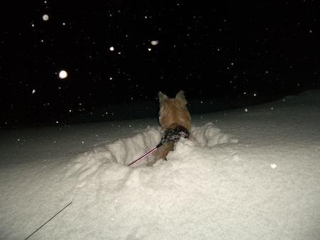 深雪ダイブw
