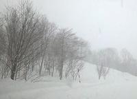 また雪だったり