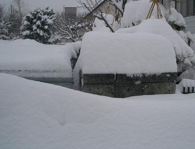3月14日、雪景色。
