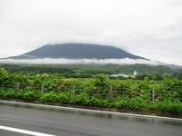 名水珈琲/京極町
