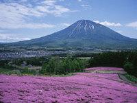 日本ハム優勝◆北海道の想い出