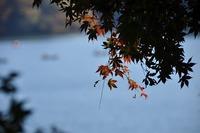 風景写真(一碧湖)