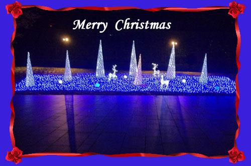 クリスマスイルミネーションをiphoneで写す