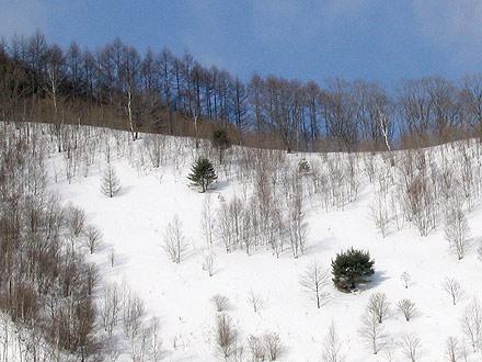 雪:upas ウパシ
