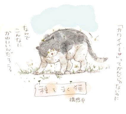 「種をまく猫」構想中〜!