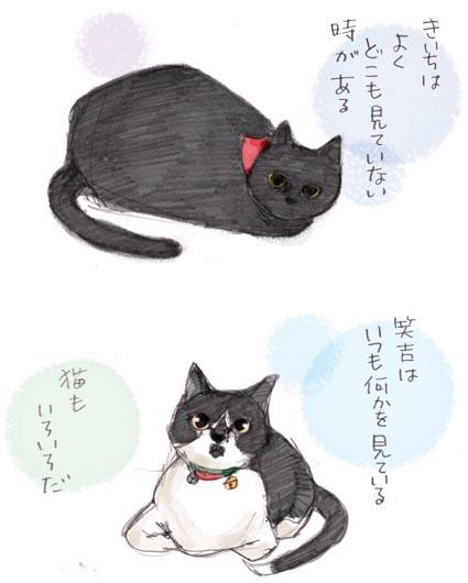 猫もいろいろ