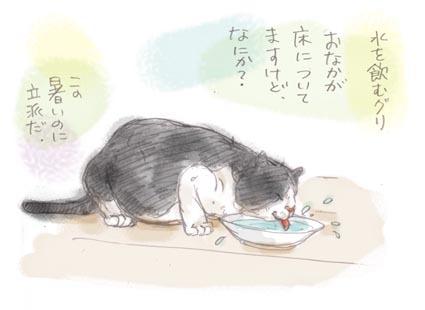 水を飲むグリ