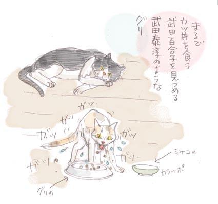 「もの食う女」