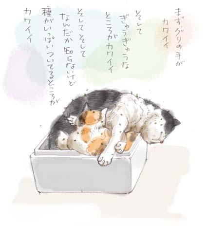 今日の「カワイイ」&不思議な箱