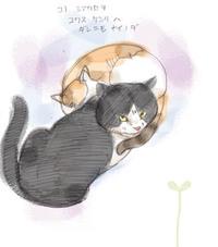 吾輩は猫であるが......
