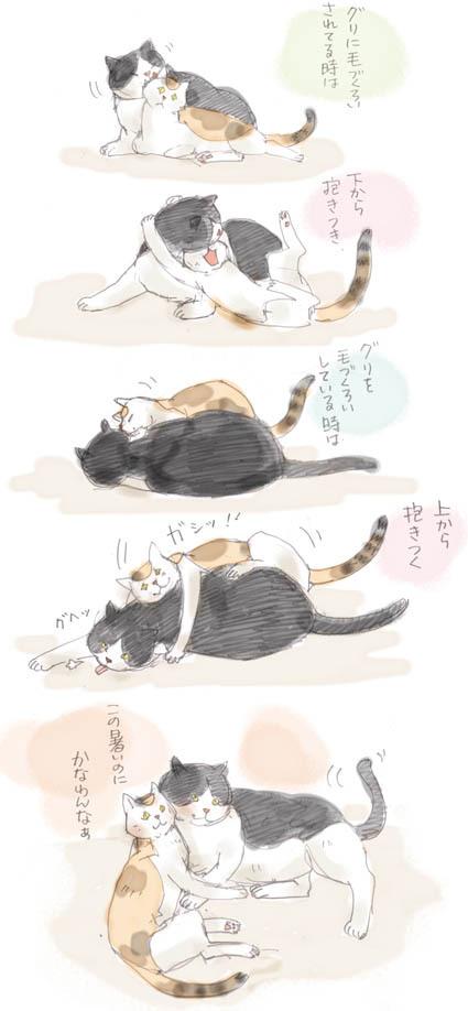 ミケコの流儀