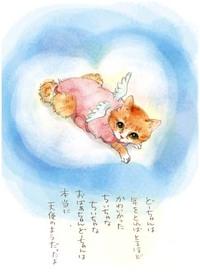 天使のドリ♡
