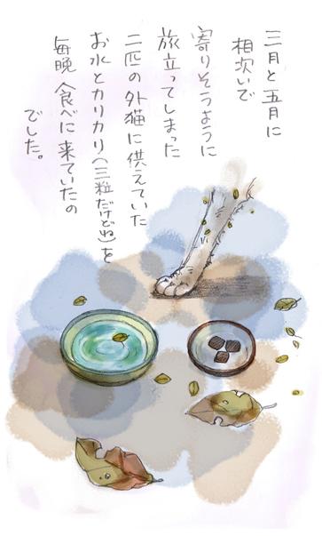 みぃこのこと(2)