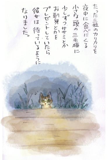 みぃこのこと(3)