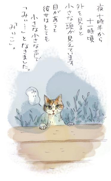 みぃこのこと(4)