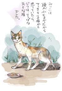 みぃこのこと(5)