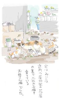 みぃこのこと(6)