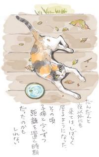 みぃこのこと(8)