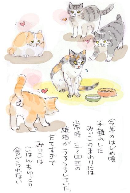 みぃこのこと(10)