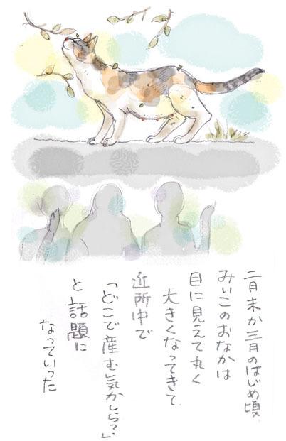 みぃこのこと(13)