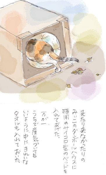みぃこのこと(14)