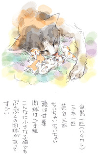 みぃこのこと(16)