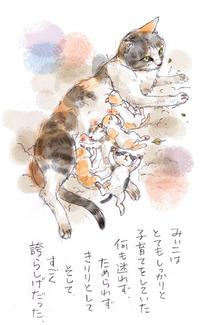 みぃこのこと(17)