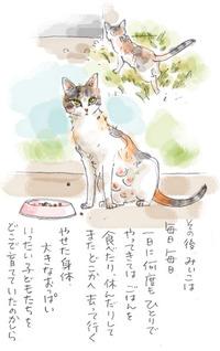みぃこのこと(20)