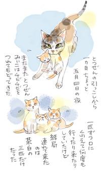 みぃこのこと(21)