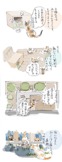 みぃこのこと(23)