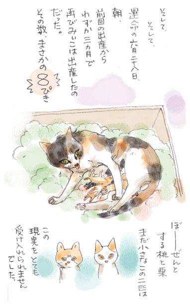 みぃこのこと(26)