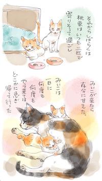 みぃこのこと(29)